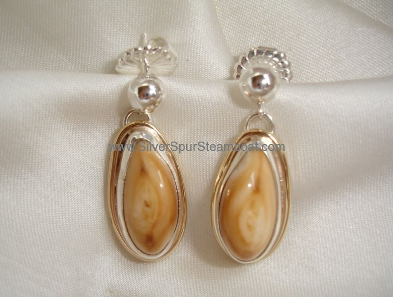 SS with 14k smooth wire trim Elk Ivory earrings