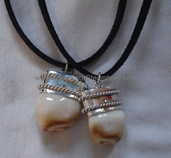 Sterling Silver Jeff Bridges Elk tooth Pendant from Crasy Heart