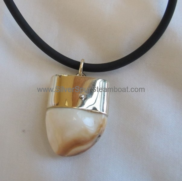 solid 14k yellow capped Elk tooth pendant