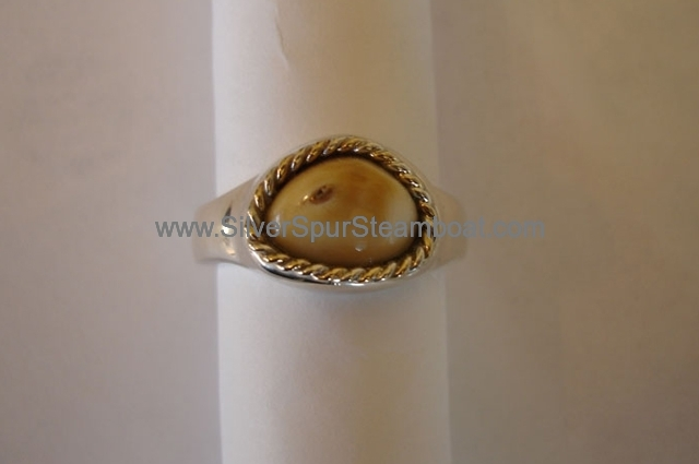 Cast sterling silver Band style Elk tooth ring with 14k y twist trim