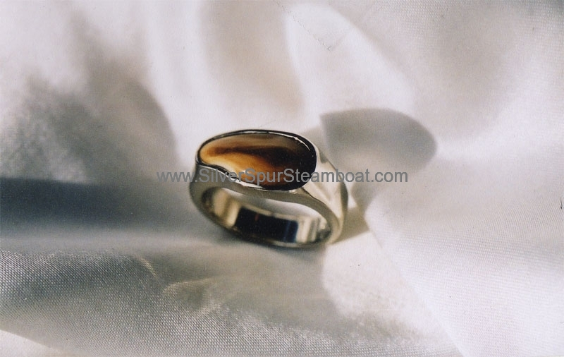 14k white band style plain Elk Tooth ring