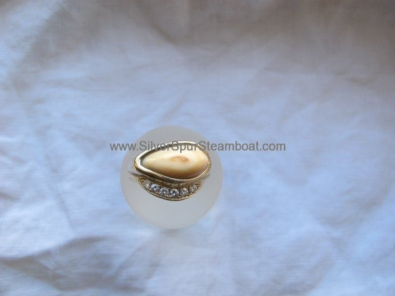 14k Yellow cast elk tooth ring with pave diamonds
