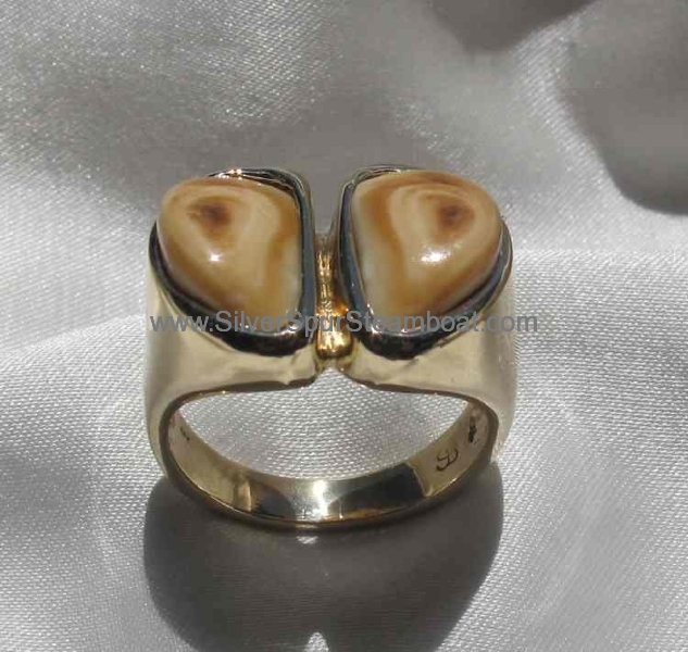 14k Yellow man's hoof print Elk tooth ring